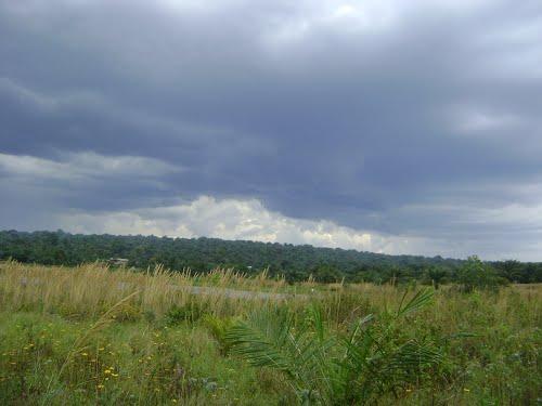 landscape near Mukamba Lake, Kasayi