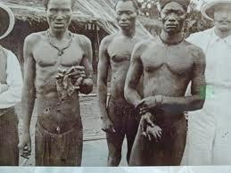Congo 8