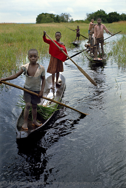 Children of Libinza tribe going to school by canoe, Ngiri river region, Democratic Republic of the Congo (ex-Zaire), Africa.