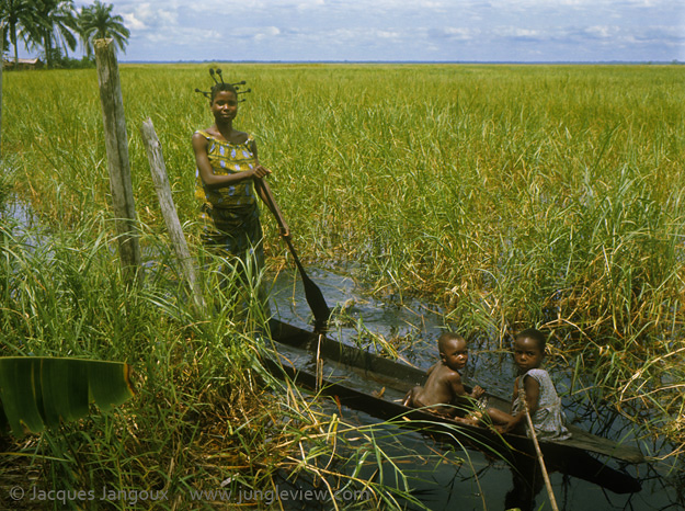 Africa, Democratic Republic of the Congo, Ngiri River area, Libinza tribe. Woman with children in canoe in swamp savanna, going to swamp forest to fish and collect drinking water.