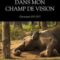 [Mikanda] ''Dans mon champ de vision'' de Mayamba Luboya